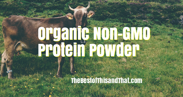 best Organic Non-GMO Protein Powder reviews